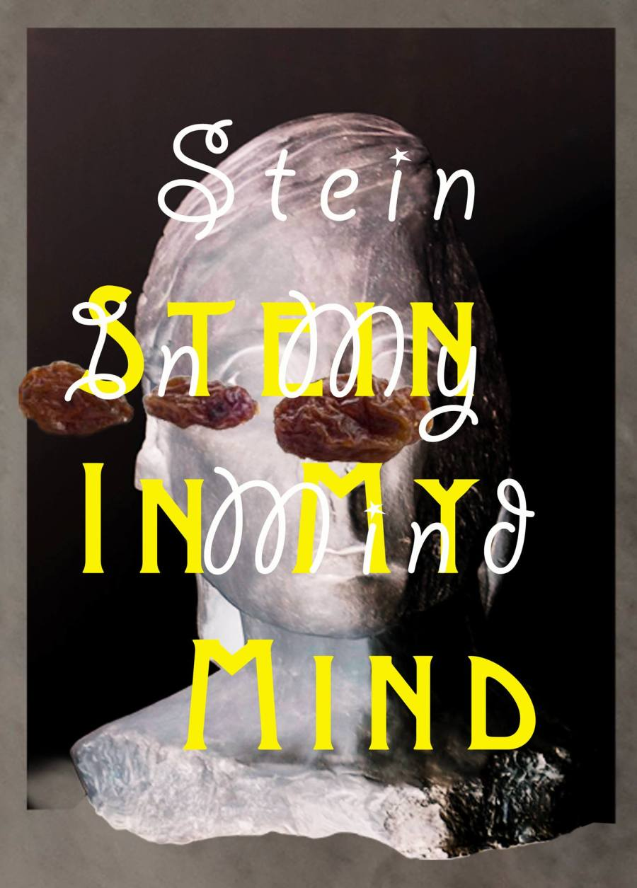 SteinMind